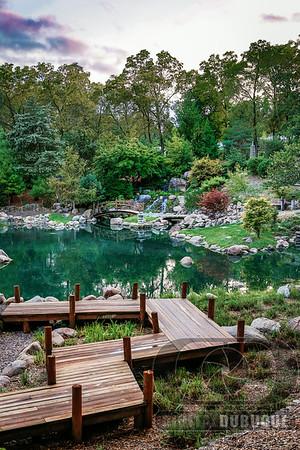 arboretum_japanese_garden_sunset