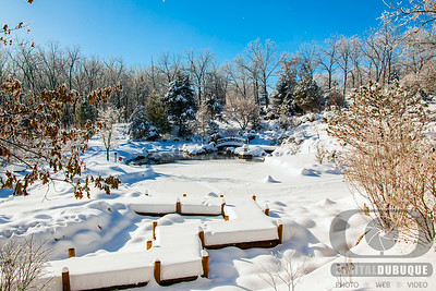 winter_japanese_pond_overview