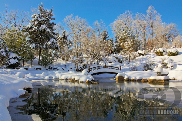 arbor_jap_pond_winter_tonemapped