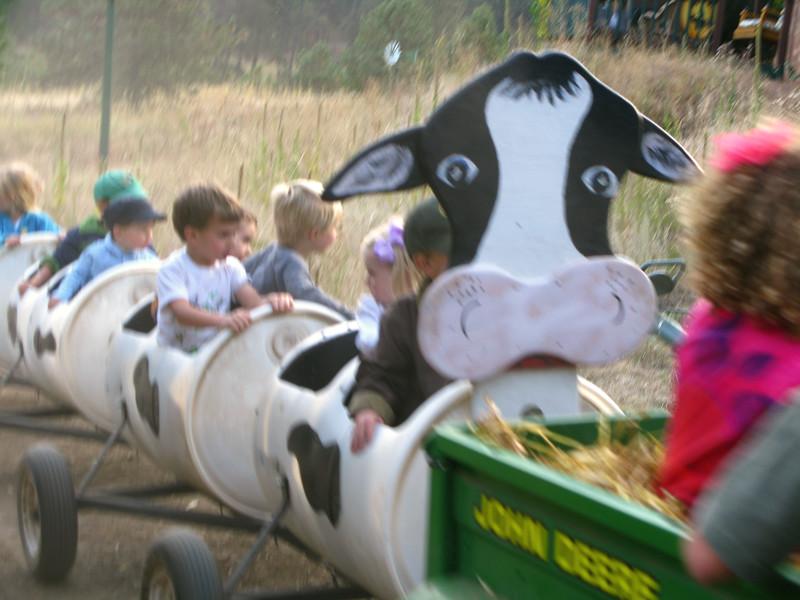 CO 2010 10 Lukes Farm 58