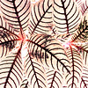 2013 0408 ECDS Butterfly Pavilion 67 inverted