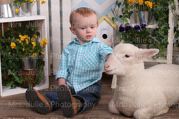 Easter Lamb Photos 2015