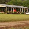 Sand Creek Farm, Edisto Island