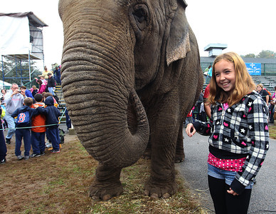 Topsfield, MA--10/3/2012--Cady Vaccaro [11 yrs old] 6th grade student from Higgins School in Peabody at the elephant birthday party at the Topsfield Fair. Photo provided by the Topsfield Fair