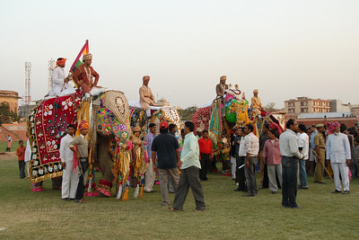 Decorated Elephants. Elephant Festival 2009 being celebrated in Jaipur on 10th Mach 2009. The elephant festival, Jaipur (Hindi: जयपुर),, is one of the most fascinating events organized in Rajasthan. This one day event coincides with Holi, the Indian festival of colors. The handlers or mahouts decorate their elephants in regal attire, and make them walk in procession at the start of the day. The procession heads to the Chaugan, the vast ground in Jaipur where this festival is hosted. The procession is watched by thousands of tourists and locals. Jaipur, Rajasthan, India.