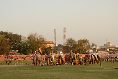Elephant Festival 2009 being celebrated in Chaugan Stadium with the City Palace seen at the back in Jaipur on 10th Mach 2009. The elephant festival, Jaipur (Hindi: जयपुर),, is one of the most fascinating events organized in Rajasthan. This one day event coincides with Holi, the Indian festival of colors. The handlers or mahouts decorate their elephants in regal attire, and make them walk in procession at the start of the day. The procession heads to the Chaugan, the vast ground in Jaipur where this festival is hosted. The procession is watched by thousands of tourists and locals. Jaipur, Rajasthan, India.