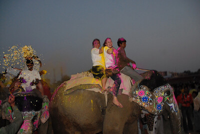 Elephant Festival 2009 being celebrated in Jaipur on 10th Mach 2009. The elephant festival, Jaipur (Hindi: जयपुर),, is one of the most fascinating events organized in Rajasthan. This one day event coincides with Holi, the Indian festival of colors. The handlers or mahouts decorate their elephants in regal attire, and make them walk in procession at the start of the day. The procession heads to the Chaugan, the vast ground in Jaipur where this festival is hosted. The procession is watched by thousands of tourists and locals. Jaipur, Rajasthan, India.