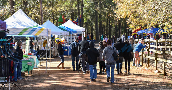 Vendor booths line a pathway at Elijah's Retreat at their Fall Festival on Saturday, November 16. The event helps raise money for the retreat which caters to families with children affected by autism. (Jessica T. Payne/Tyler Morning Telegraph)