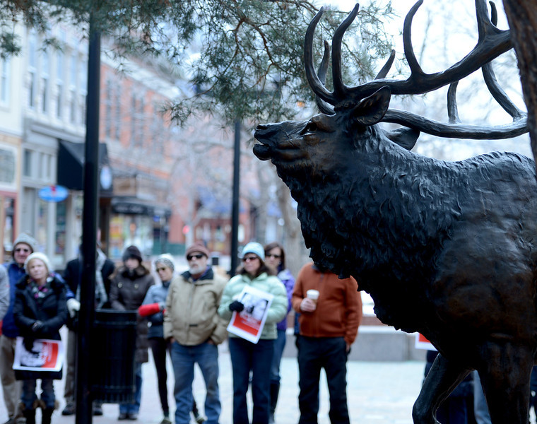 "The marchers gather at the bronze elk statue at the east end of the Pearl Street Mall.<br /> A group of Boulder residents is organized a ""silent"" walk on the Pearl Street Mall on Sunday to honor the elk shot in the Mapleton Hill neighborhood on New Year's Day.<br /> For a video and more photos of the march, go to  <a href=""http://www.dailycamera.com"">http://www.dailycamera.com</a>.<br /> <br /> Cliff Grassmick  / January 13, 2013"