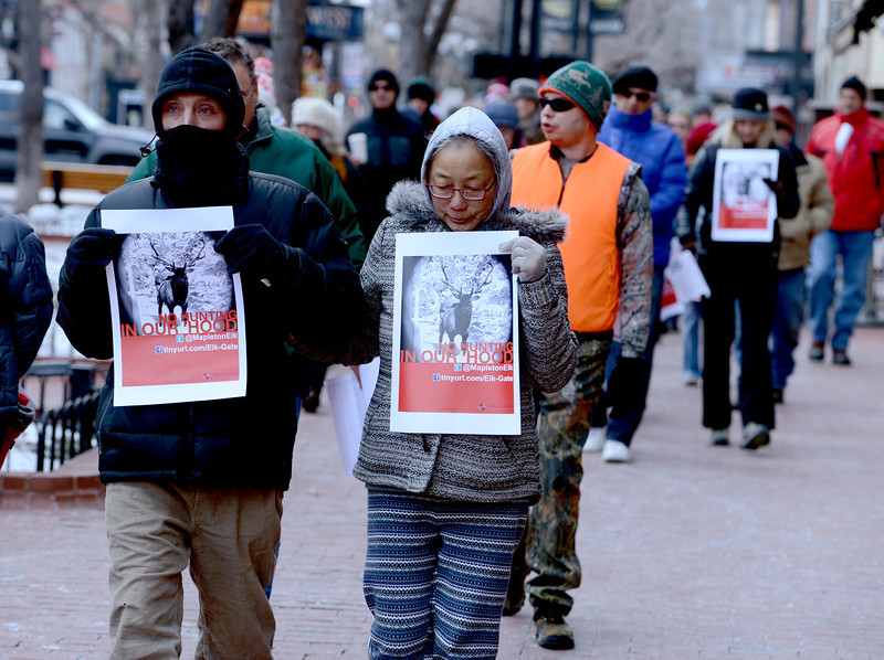 "Frank Jones, left, and Betty Woon, lead  dozens of marchers down the Pearl Street Mall.<br /> A group of Boulder residents is organized a ""silent"" walk on the Pearl Street Mall on Sunday to honor the elk shot in the Mapleton Hill neighborhood on New Year's Day.<br /> For a video and more photos of the march, go to  <a href=""http://www.dailycamera.com"">http://www.dailycamera.com</a>.<br /> <br /> Cliff Grassmick  / January 13, 2013"