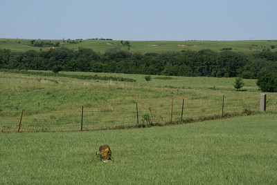 Thompson Creek valley seen below Scates Pioneer Cemetery. Area of first settlements in Ellsworth County.