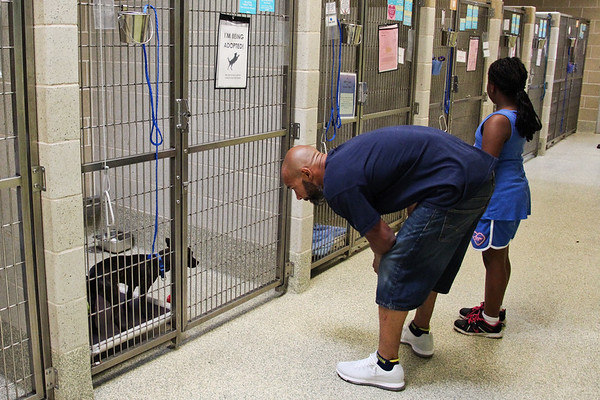 2018 - 05 - Empty the Shelters adoption event