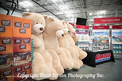 Bigger than life size Teddy Bears. So cute. Great for Baby's room!