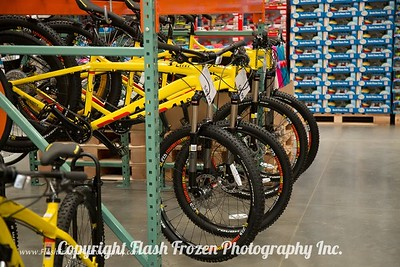 Bicycles for Fun or for that holiday gift