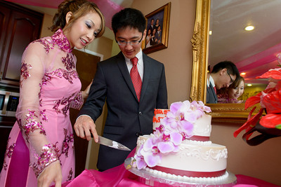 0414_d800a_Vivan_and_Patrick_San_Jose_Vietnamese_Engagement_Party_Photography