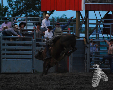 Rodeo 2011