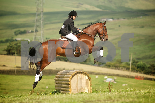 Saddleworth Riding Club Summer Show