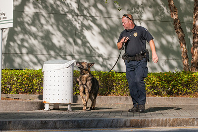 Law enforcement officer Lt. Hensley takes K-9, Adam around the trash receptacles outside the convention center for security precautions.  (Photo by Thomas Spink / Archdiocese of Atlanta)