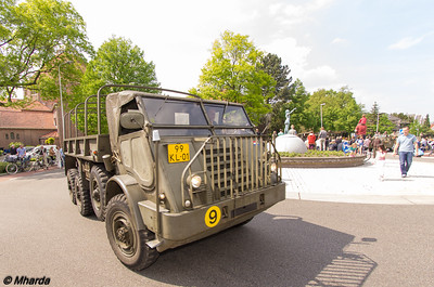 IMGP4811
