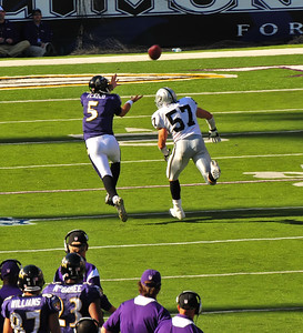 Baltimore Ravens, Joe Flacco Aspect Photography, waldorf maryland. http://www.aspect-photo.com