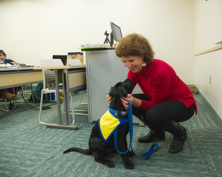 Kimberly Cook with Render the service dog.