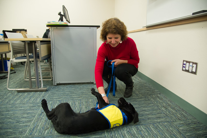 120115_RenderServiceDogTraining-0027