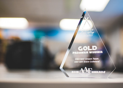 030816_AAF-AwardsCelebration-0261