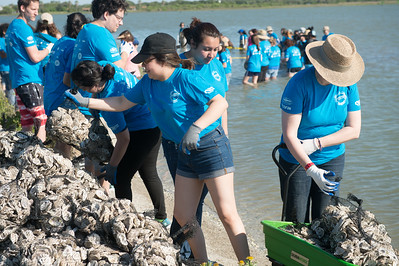 050716_SinkYourShucks-OysterReefRestoration-7037