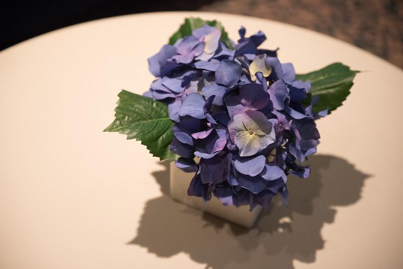 051116_LavenderGraduation-3971