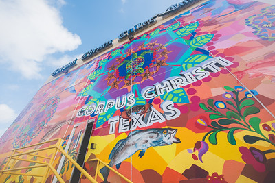 Prepainted cloth panels are set on the Corpus Christi Mural by artist Sandra Gonzalez. For the Corpus Christi - Caller Times mural in downtown Corpus Christi. Thursday June 16, 2016.