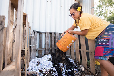 Melissa Zamora dumps the coffee grounds donated from starbucks over shredded paper received from the HRI building.