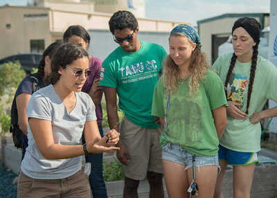 Melizza Zamora shows students how to transplant plants at the Islander Go Green garden party.