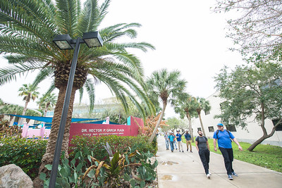 Students make their way across the Dr. Hector P. Garcia Plaza on the first day of classes for the spring 2017 semester.