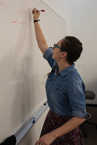 SI instructor Lillian Arroyo Lopez draws a demonstration on the board on Monday, March 06, 2017.