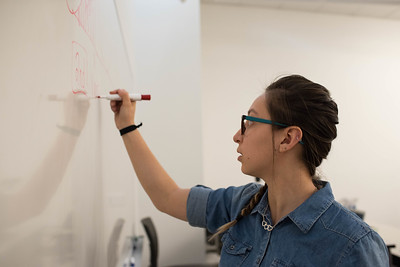 SI instructor Lillian Arroyo Lopez draws a demonstration on the board on Monday, March 06, 2017