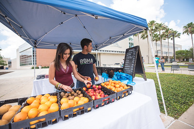 Victoria Cantu (left), and Gerardo Cabrera look through the selection of food available at the Dining Hall's Farmer's Market on the East Lawn.