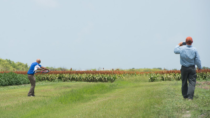 061317_UAS-Agriculture-6110225
