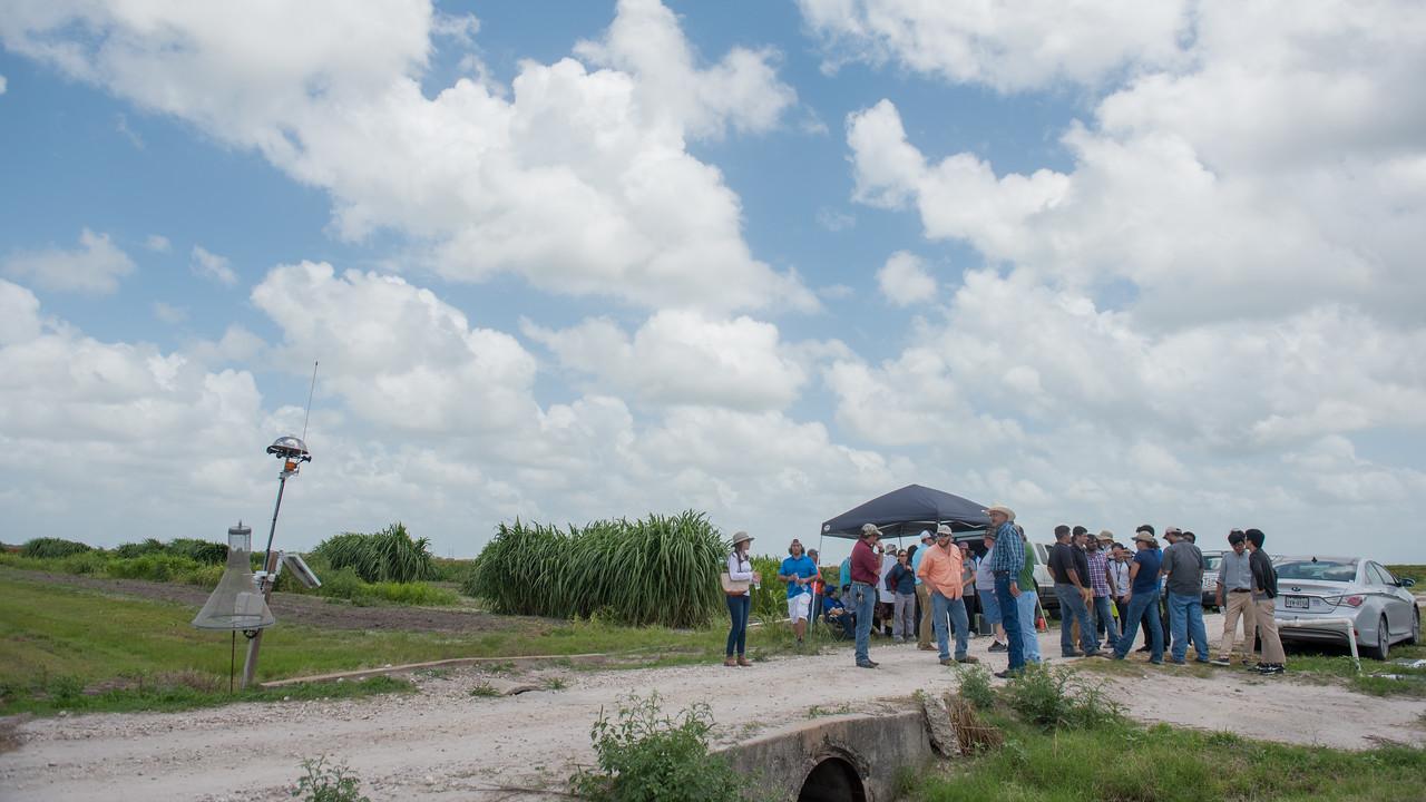 061317_UAS-Agriculture_ED-4199