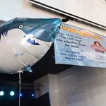 072617_SharkWeek-0866