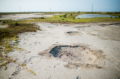 The landscape is left carved by the water surge that flowed throughout Mustang Island's marshes.
