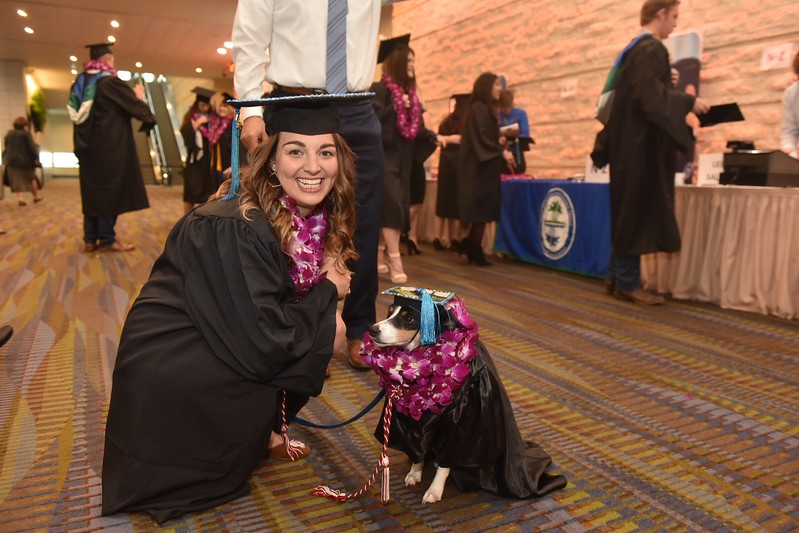 Taylor Dearman and her medical alert service dog Skittles during the Fall 2017 Commencement Ceremony.