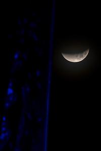 2018_0131-Moon-8007