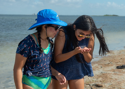 Underwater Robotics Camp students Grace Tulinsky (left) and Trinity Rodriguez examine diferrent kinds of sea grass that grow around the Laguna Madre Field Station.  Check out other available summer camps for kids and teens here: http://bit.ly/2MighNt