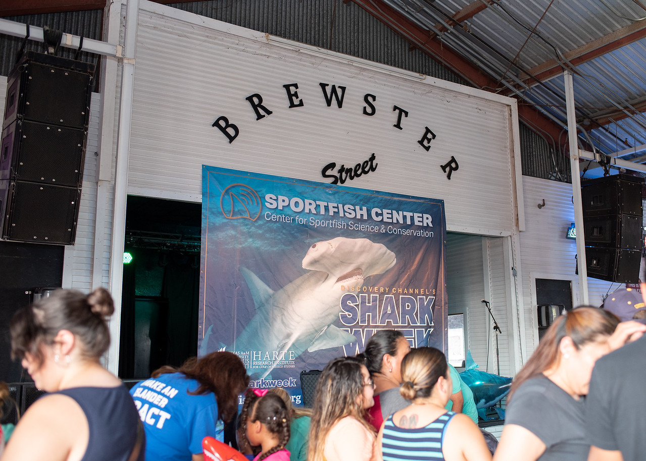Shark Week Live! Draws Thousands to Learn About Shark Science Texas