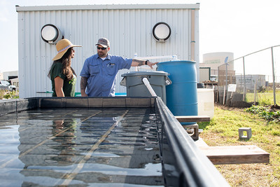 Keith Kurth (right) explains the process of the new Aquaponics to Islander Green Team's president Devika Tijerina.