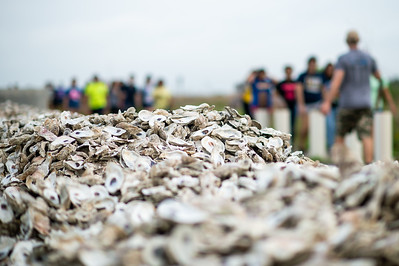 2019_0518-OysterReefRestoration-3105