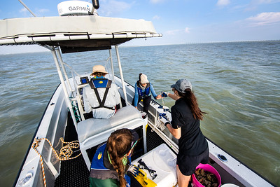 HRI research team prepares to do a water visibility test.