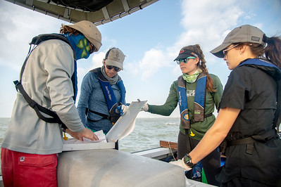 HRI research staff prepare paper work needed to collect data from their oyster collection site.