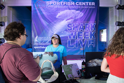 """The Harte Research Institute for Gulf of Mexico Studies (HRI) at Texas A&M University-Corpus Christi hosted their third annual """"Shark Week Live!"""" event."""