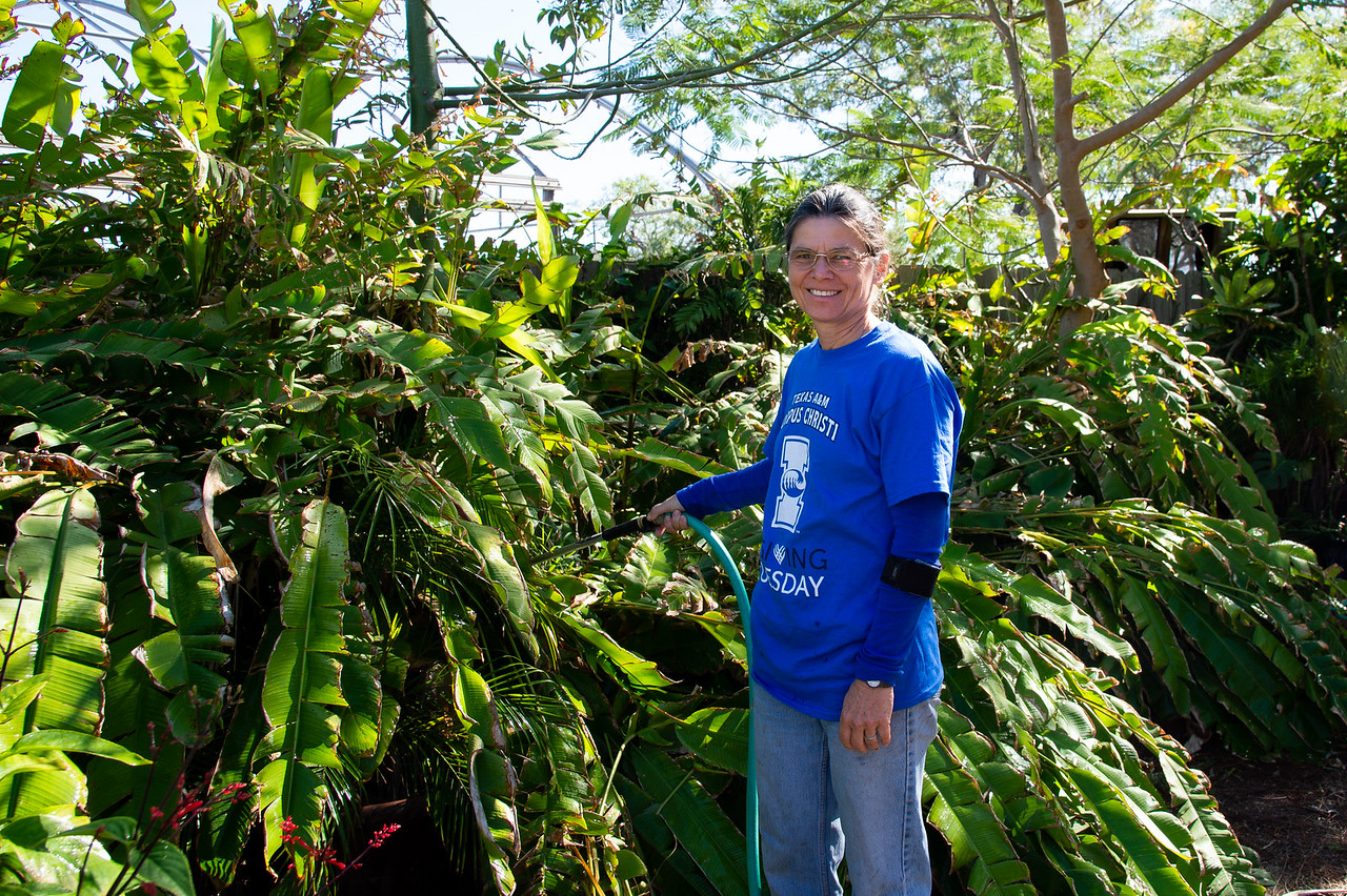 Photo: Trung Le TAMU-CC MARCOM Student Worker.